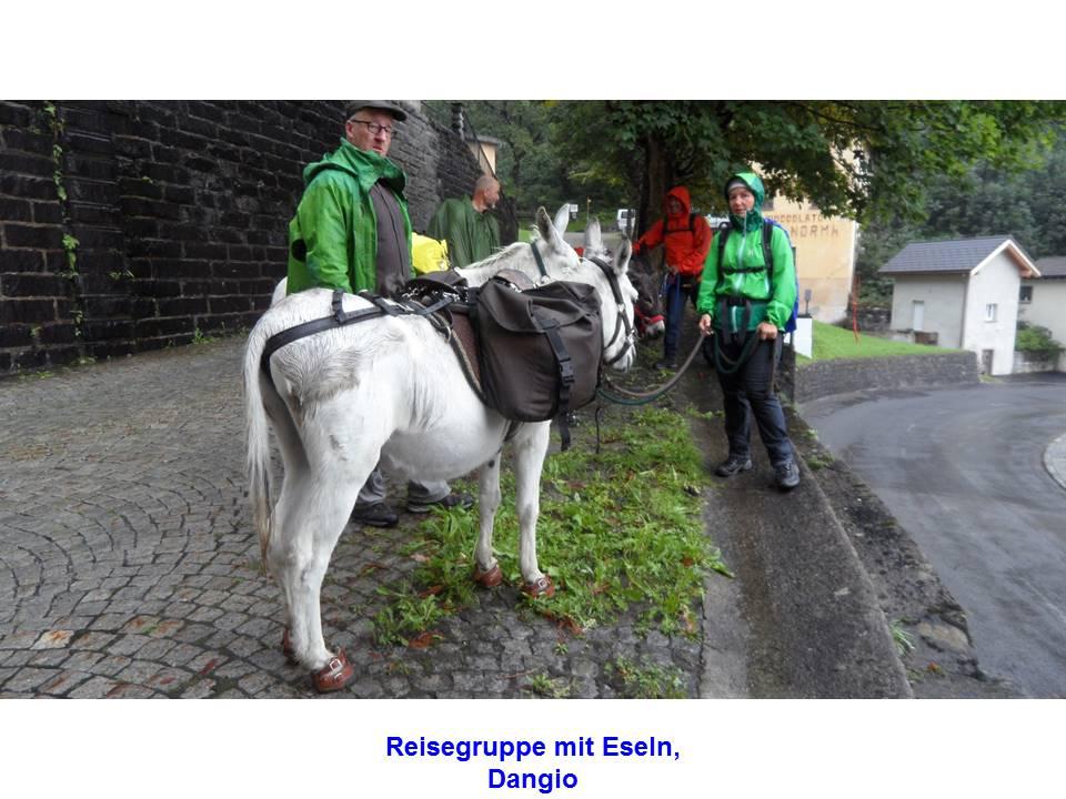 Reisegruppe mit Eseln, Dangio