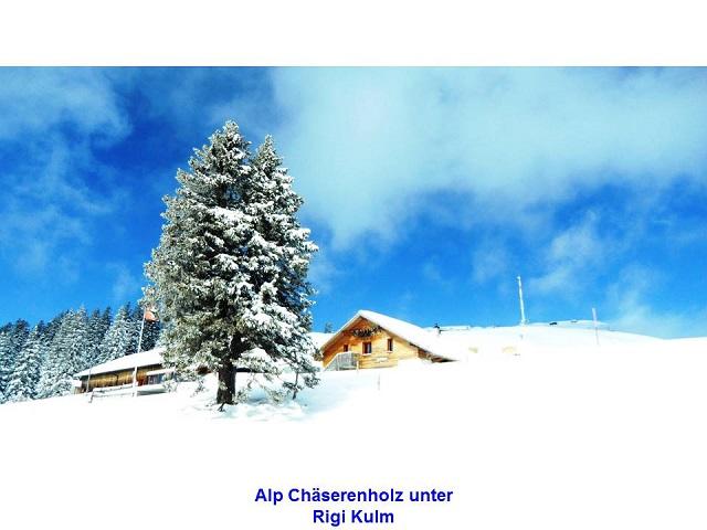 Alp Chäserenholz unter Rigi Kulm