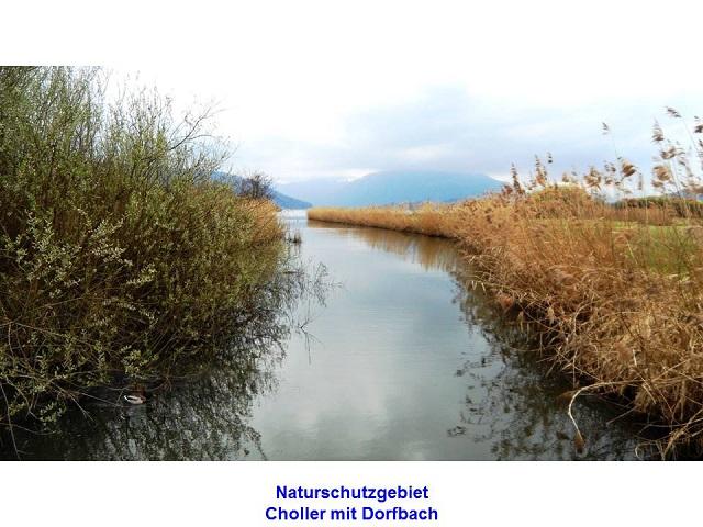 Naturschutzgebiet Choller