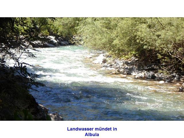 Landwasser mündet in Albula