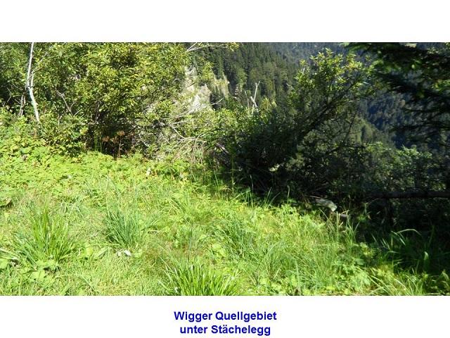 Wigger Quellgebiet unter Stächelegg