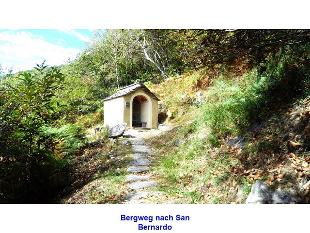 bergweg-nach-san-bernardo